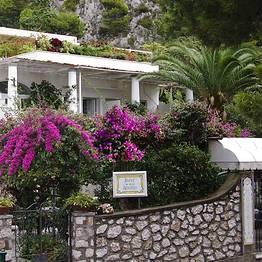 Nautilus Capri