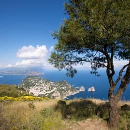 Capri Guide - The Best Travel Guide of Capri Island Capri