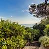 Villa Capricorno Ischia