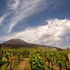 Cantina del Vesuvio Trecase