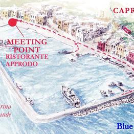 Blue Sea Capri - Shared Tour of Capri + Swim at the Green Grotto