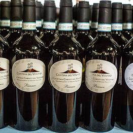 Cantina del Vesuvio - Pigiatura uva, degustazione di Lacryma Christi e pranzo
