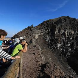 Travel Etc  - Tour Guidato Pompei &  Monte Vesuvio  Skip-the-line
