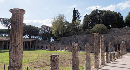 Star Cars - Food Tour with the Gargiulo Olive Mill and Pompeii
