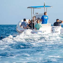 Capri Whales - Tour veloce di Capri in gommone da 250 cv con marinaio