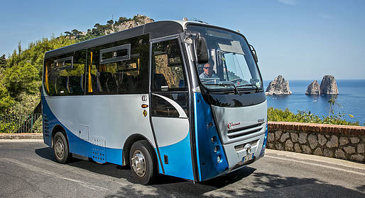 Staiano Tour Capri - Capri and Anacapri: Guided Tour