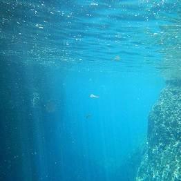 Vincenzo Capri Boats - Capri, tour in gommone con skipper