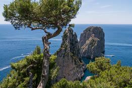 Il Sentiero del Pizzolungo, trekking a Capri