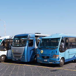 Capri Day Tour - Bus per Anacapri