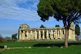 Paestum: visita ai templi e mozzarella experience