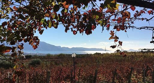 Eurolimo - Pompei e degustazione vini Lacryma Christi