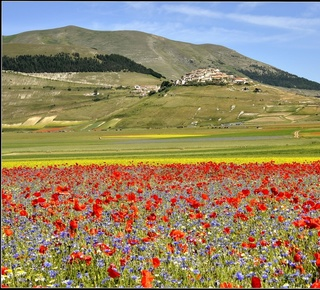 Treasures of Le Marche guided walking tour Hotel