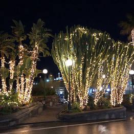 Natale e Capodanno a Capri - 2017