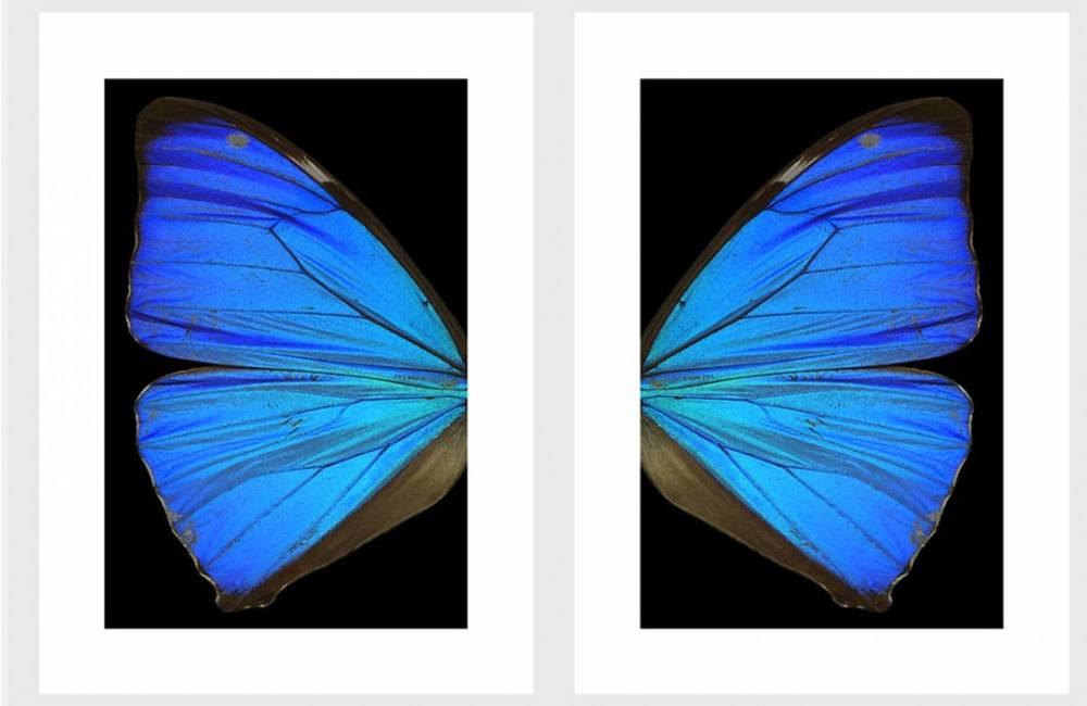 Le ali dell'angelo terzo