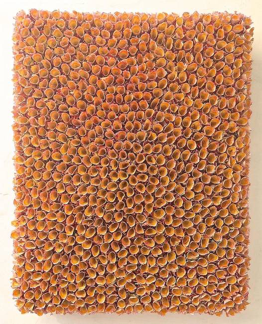 Flower bed - orange
