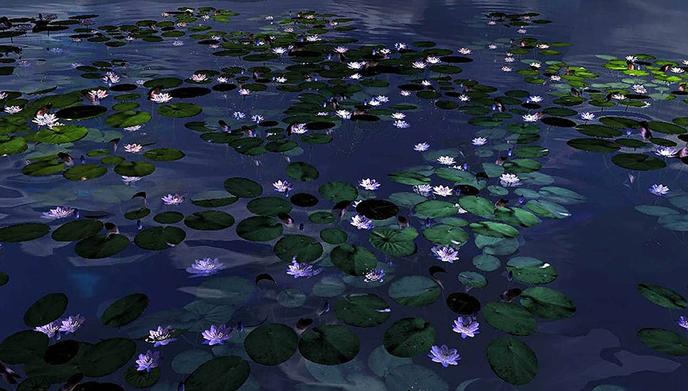 Night in Giverny