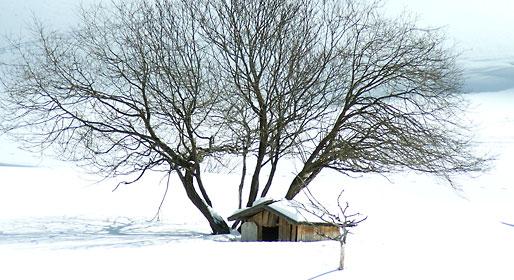 Winter in Val Pusteria