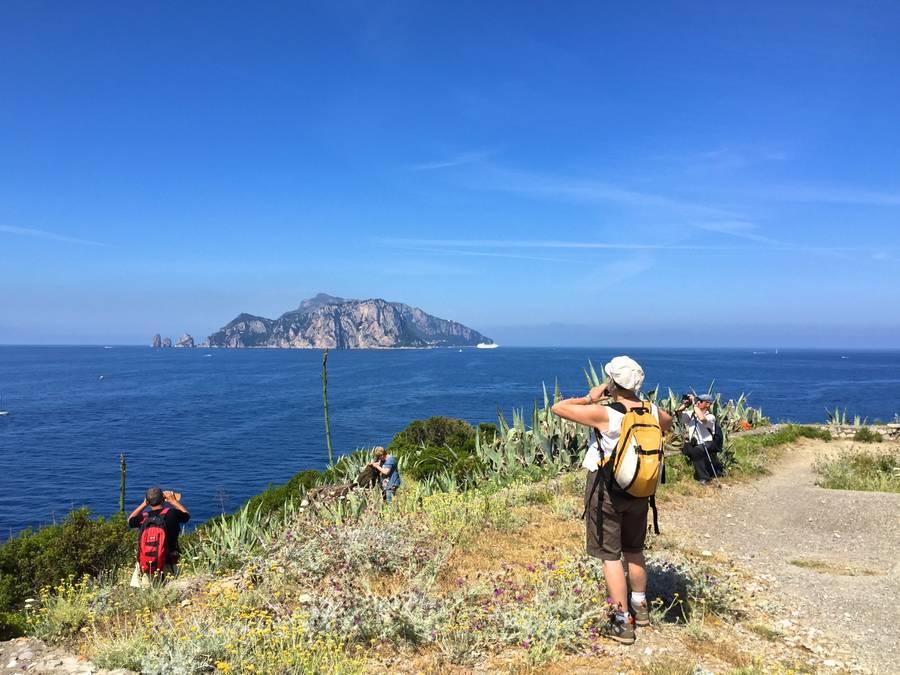 Punta Campanella - Nature - Amalfi Coast