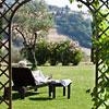 Tenuta di Canonica Todi