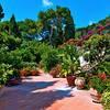 Villa Brunella Capri