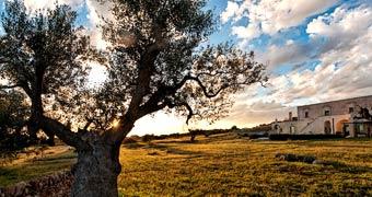 Masseria Le Fabriche Maruggio Taranto hotels