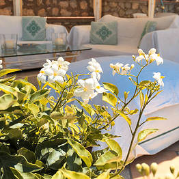 Boutique B&B Bettola del Re Anacapri