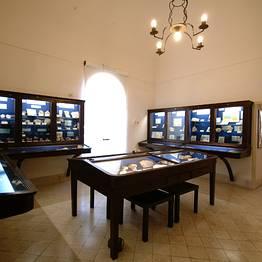 Centro Caprense Ignazio Cerio Capri