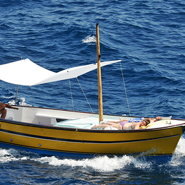 Capri Whales - Tour in barca da Sorrento + tempo libero a Capri