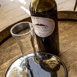 Cantina del Vesuvio - Organic Wine Tasting with Lunch on Vesuvius