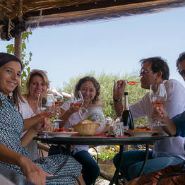 Organic Wine Tasting with Lunch on Vesuvius