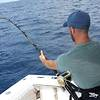 You Know! - Sea-Fishing Experience from Sorrento with Lunch