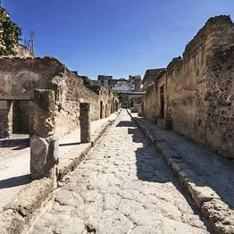 Goldentours - Herculaneum Half-day Tour