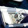 Vincenzo Capri Boats - Rubber Dinghy Rental on Capri