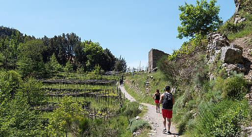 Sorrento Limo - Sentiero degli Dei all inclusive transfer+guida locale