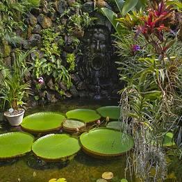 Buyourtour - Tour di Ischia e dei Giardini della Mortella