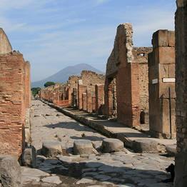 Astarita Car Service - Private Tour to Pompeii-Herculaneum-Naples Arch Museum