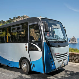 Staiano Tour Capri - Shuttle Bus: Port - Capri - Anacapri or Return