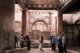 Private Half-Day Herculaneum Driving Tour from Sorrento