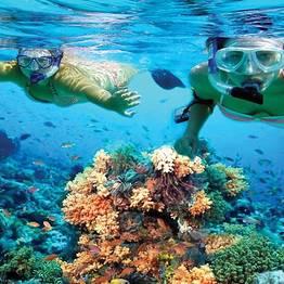 Buyourtour - Snorkeling