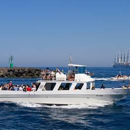 Laser Capri - Linea marittima: Piano di Sorrento - Capri