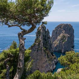 Nesea Capri Tour - Il Sentiero del Pizzolungo, trekking a Capri