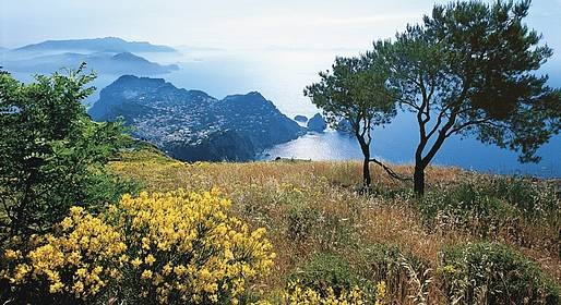 Nesea Capri Tour - Anacapri - Private Full Day Tour