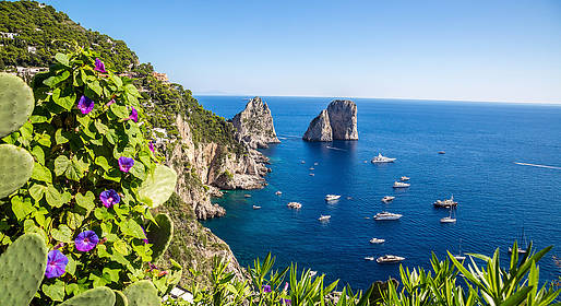 Nesea Capri Tour -  Capri 5 Senses - 3 hours Private tour