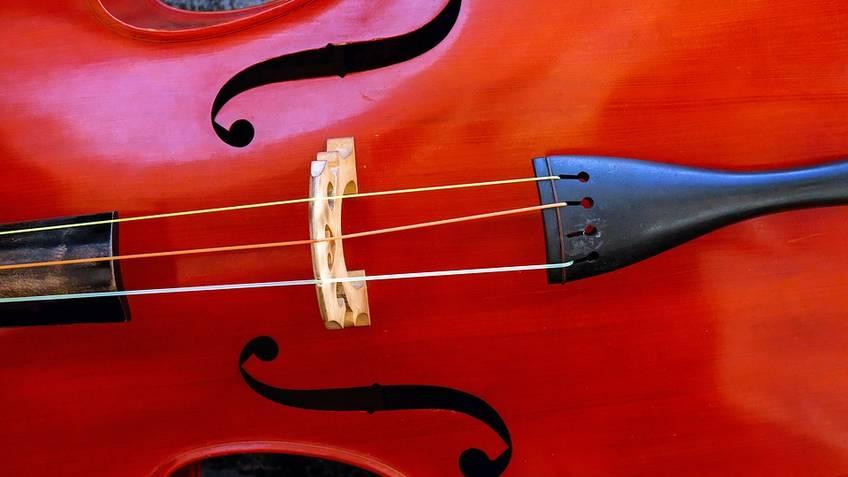 Caprionline - Concerto per violino di Federica Tranzillo
