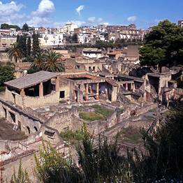 Joe Banana Limos - Tours & Transfers - Transfer Sorrento-Naples (or vice versa) + Pompeii stop
