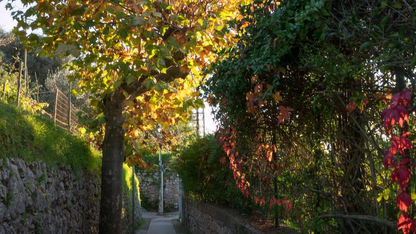 Capri Official Guides - Dalla Porta alla Migliera