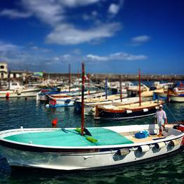 Spring special - 2/3 hour tour of Capri by gozzo